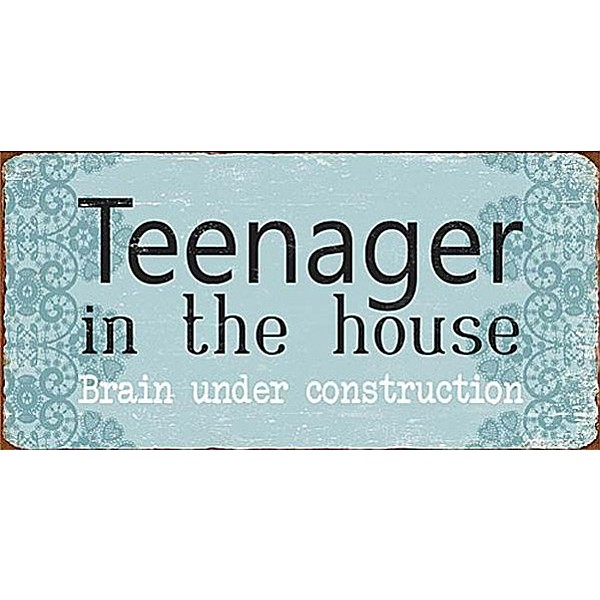 Magnet Teenager in the house brain under construction