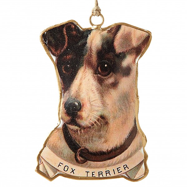 Dog Fox Terrier BEATRIX