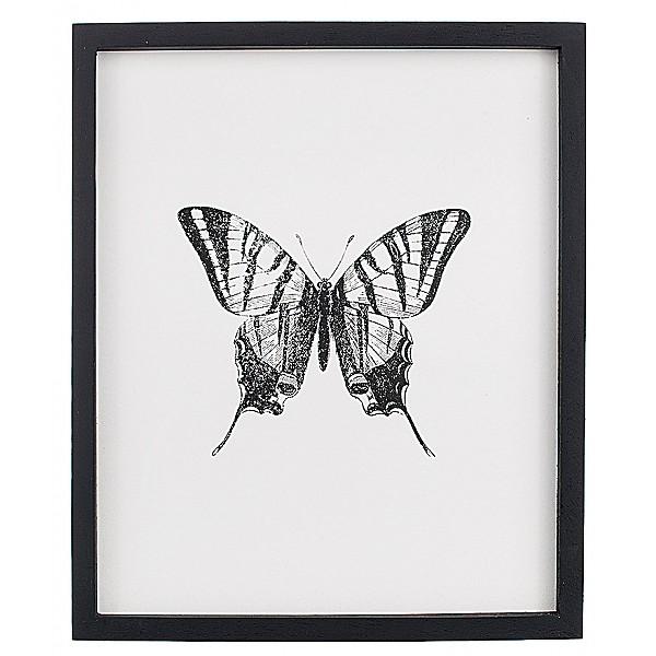 Tavla Insekt Fjäril 2 - 25 x 30 cm