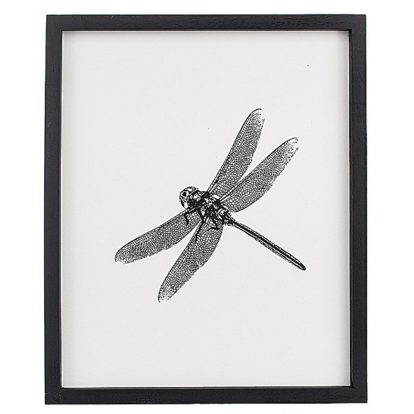 Picture Insect Dragonfly - 25 x 30 cm