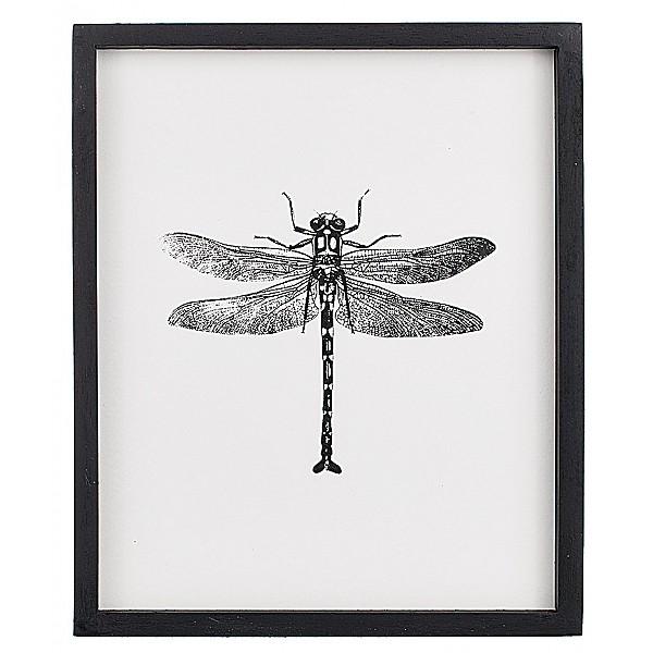 Tavla Insekt Trollslända 2 - 25 x 30 cm