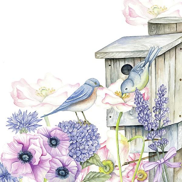 Servetter Birdhouse Backyard