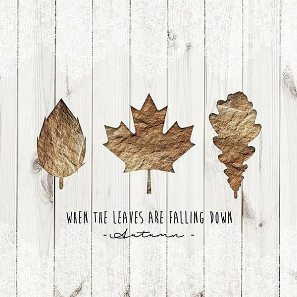 Servetter When Leaves Falling