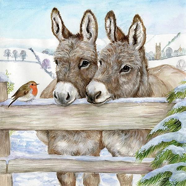 Servetter Donkeys