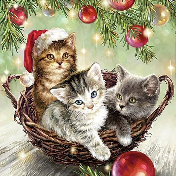 Servetter Cats In Basket