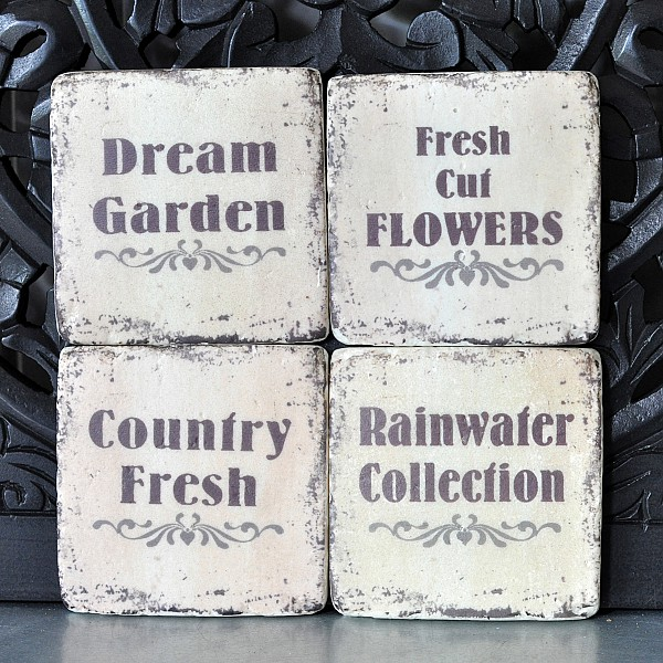 Coasters Dream Garden