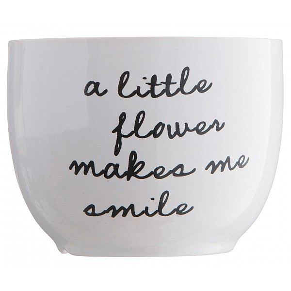 Flowerpot A little flower makes me smile