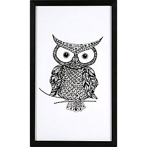 Picture Owl with black frame