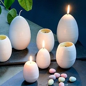 Egg Candle - Hen Egg