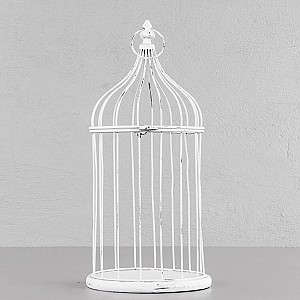 Birdcage Twitter