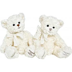 Teddy Bear Välkommen till världen