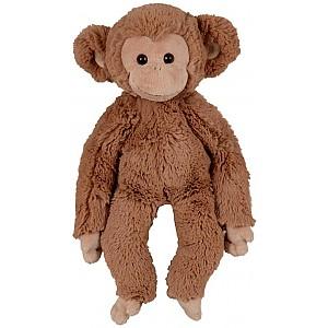 Monkey Bernard