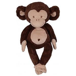 Affe süßer Bernard