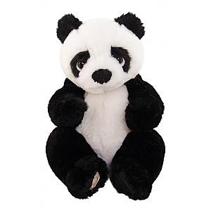 Panda Baby Jie Jie