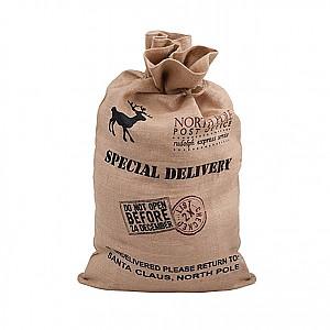Julklappssäck Special Delivery