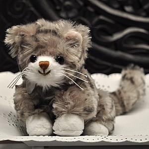 Cat Little Maciek - Braune Nase