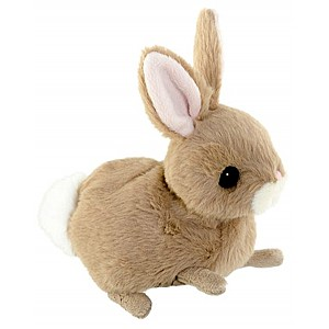 Bunny Zeus