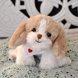 Hund Baby Beagle