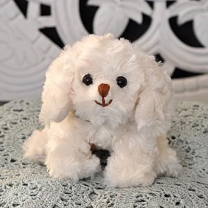 Dog Baby Westus