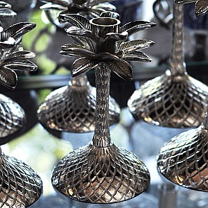 Candlestick Palm Silver