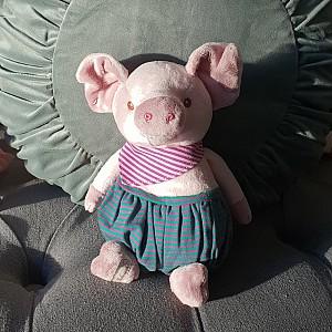 Pig Basile