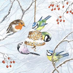 Servietten Winterbirds
