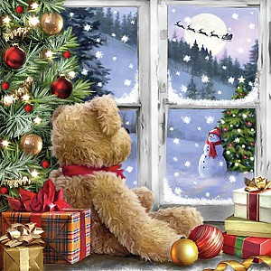 Napkins Teddy Looking At Santa