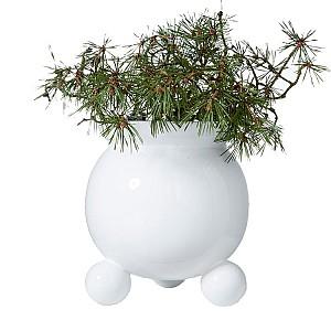 Flower Pot Anya