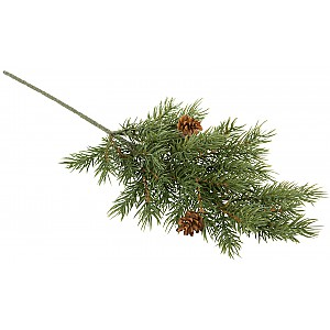Spruce Twig with Cones