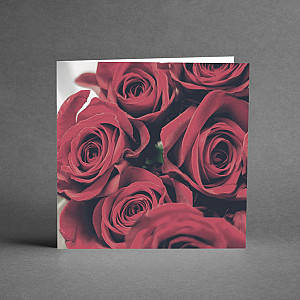 Card Red Roses