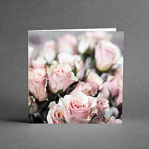 Card Pink Roses