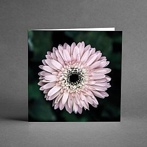 Kort Blomma