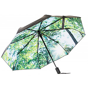 Umbrella Forest