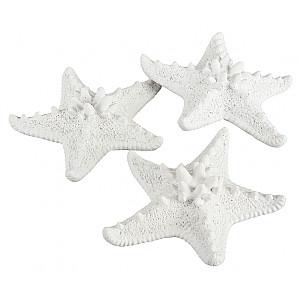 Starfish White - Small
