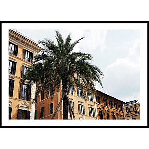 Poster Palm Italy