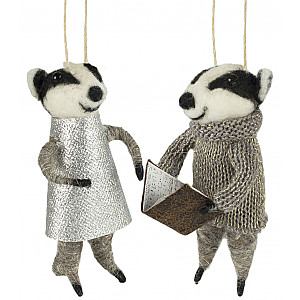 Raccoons set of 2