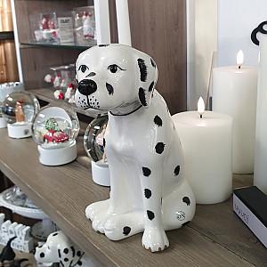 Dalmatian Pongo