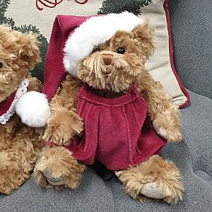 Teddy Bear Alexander