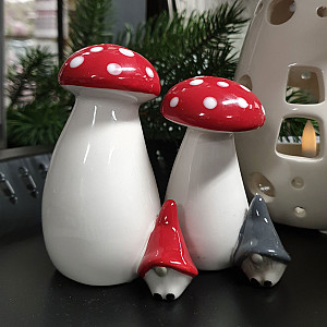 Salt & Pepper Gnome auf Pilz