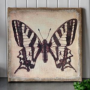 Leinwand Schmetterling