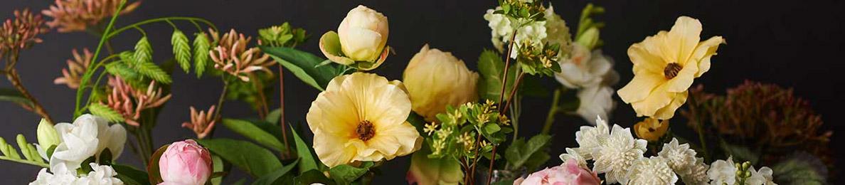Konstväxter & Torkade blommor