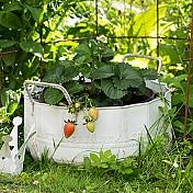 Krukor & Planteringskärl